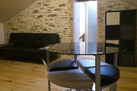 Appartement plein de charme - La Roche-sur-Yon