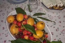 Frutta del giardino