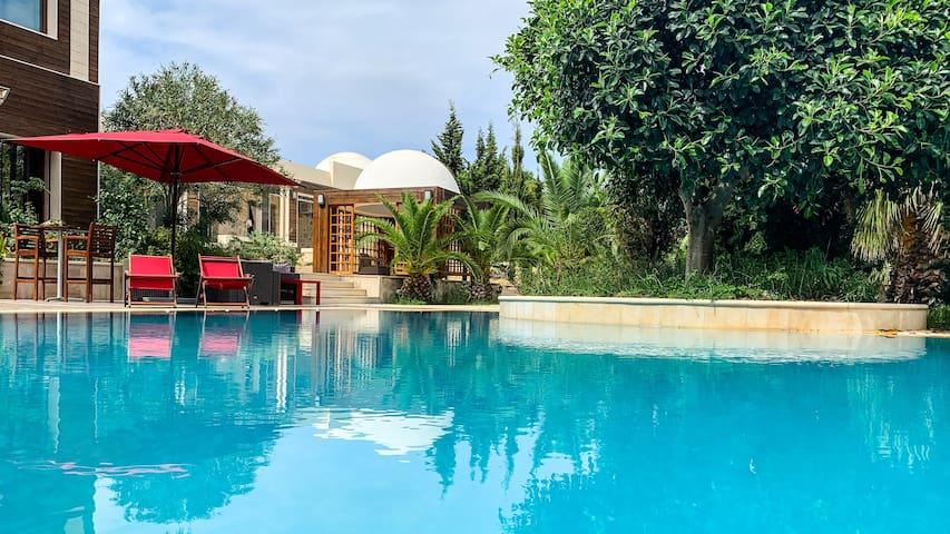 Chambre Sélim, entre piscine et oliviers