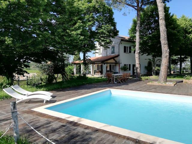Holiday villa, pool, olives and sea.