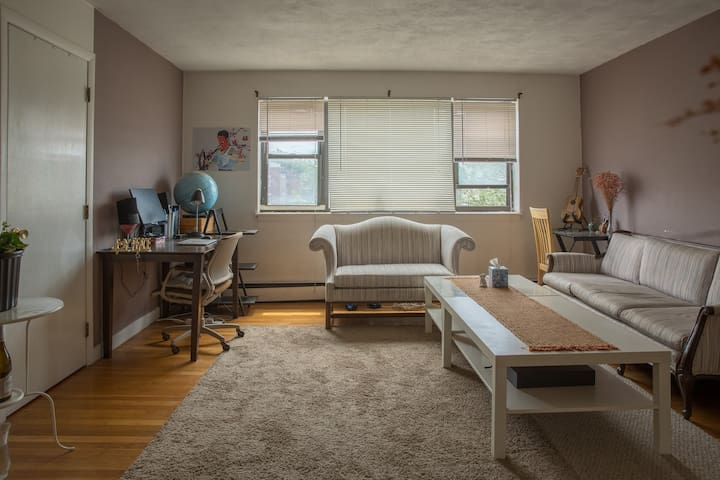 bedroom next to boston university apartments for rent in