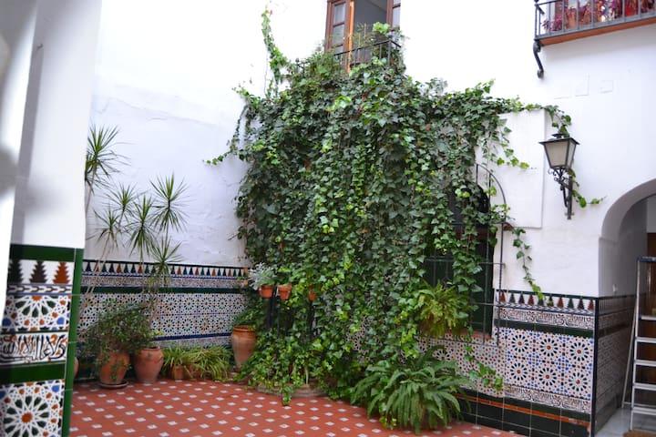 Casa patio típica en el corazón de Córdoba