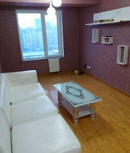 Cozy 2-room apartment in central part of UB - Ulaanbaatar - Leilighet