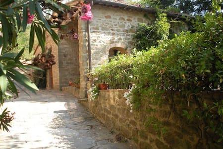 Casa al Prato - Lamole - Apartamento