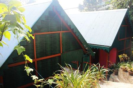 Eco cottages/ Himalayan Home stay - Chaita Pani Tea Garden
