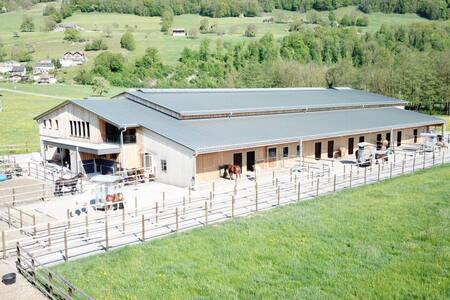 Familiärer Westernstall im St. Galler Rheintal Zi1
