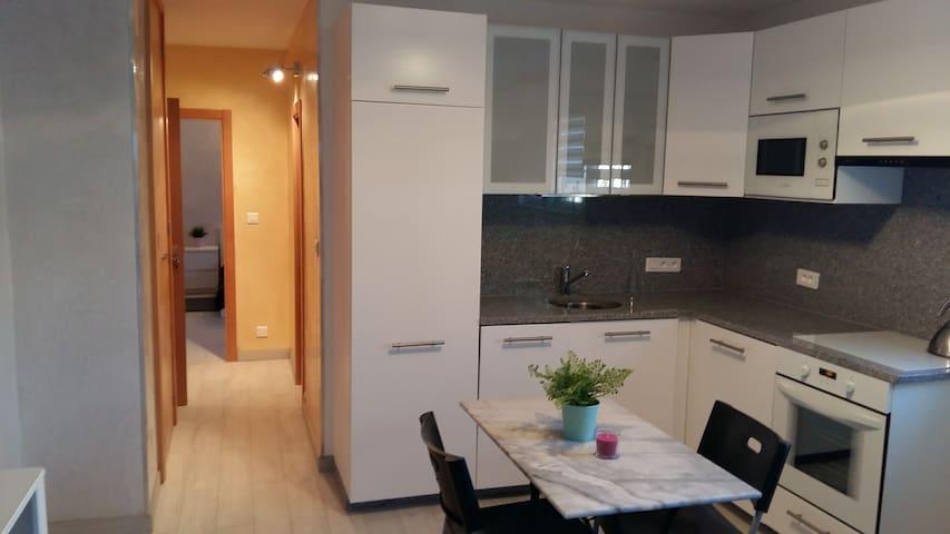 Appartement de 40 m2 entièrement refait à neuf.. - Saint-Julien-en-Genevois