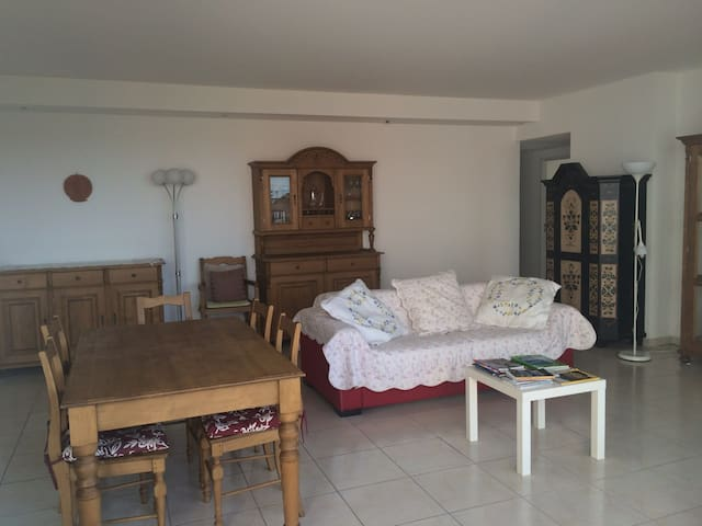 LARGE APARTMENT WITH TERRACE - NEAR THE LIRONDE PARK IN MONTPELLIER