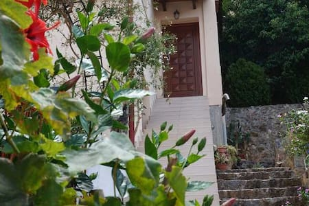 Silver House - Neo Chorio - Other - 1
