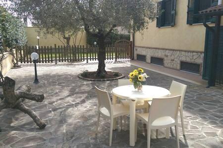 Casa con Giardino free wi-fi - โรม - บ้าน