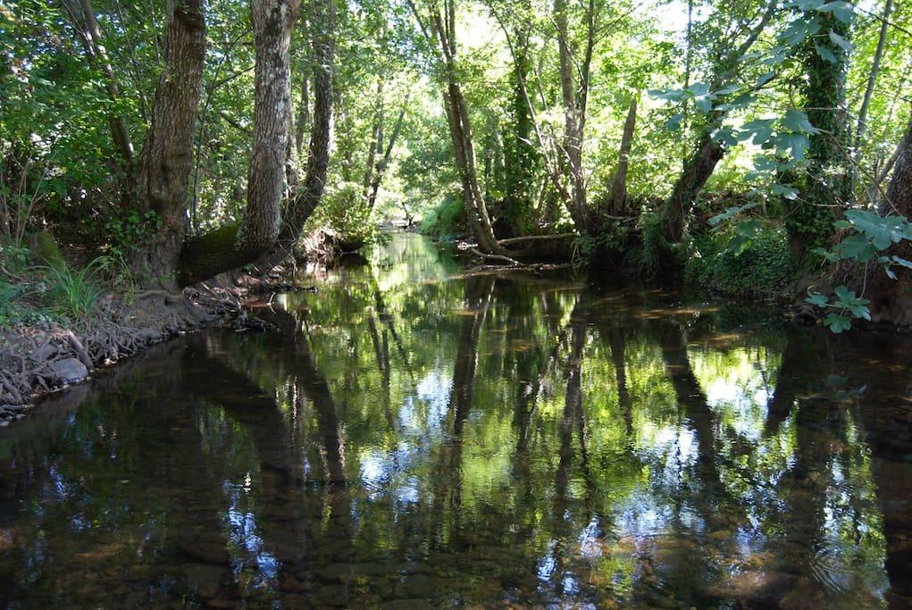 River Sever in TerraFazBem