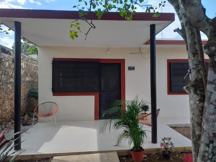 Vintage Restored House
