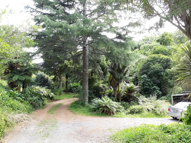 Quirky Woods at Maketu - tranquil valley retreat
