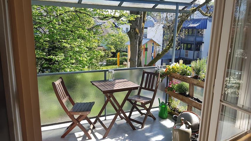 Ruhige 1-Zi. Wohnung direkt am See in Konstanz