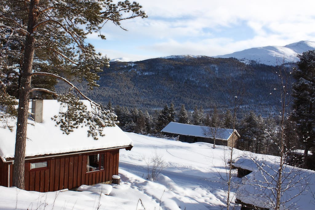 Heidal 750 moh nord gudbrandsdalen chalet in affitto a for Cabina innevata nei boschi