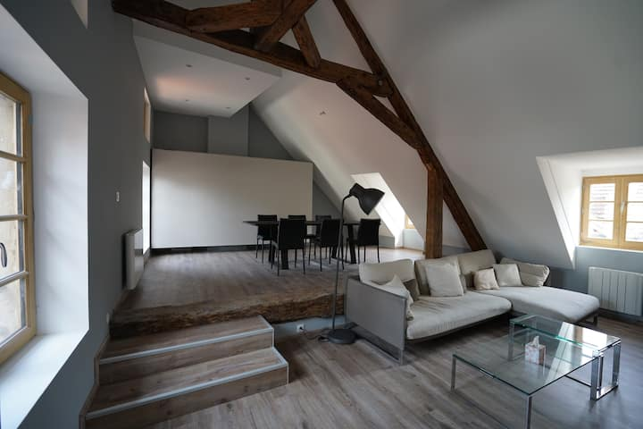 Grand appartement centre annecy lac