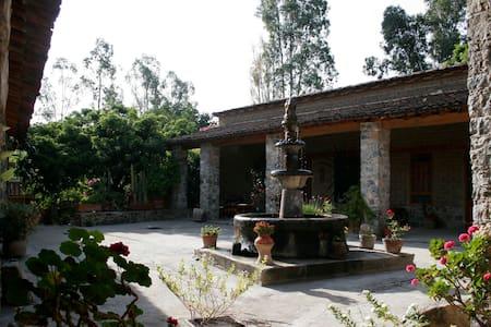 EL ENCUENTRO - Oaxaca - Oaxaca