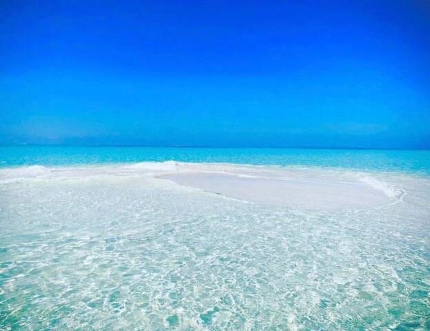 PALM REST, Kaashidhoo sand bank.