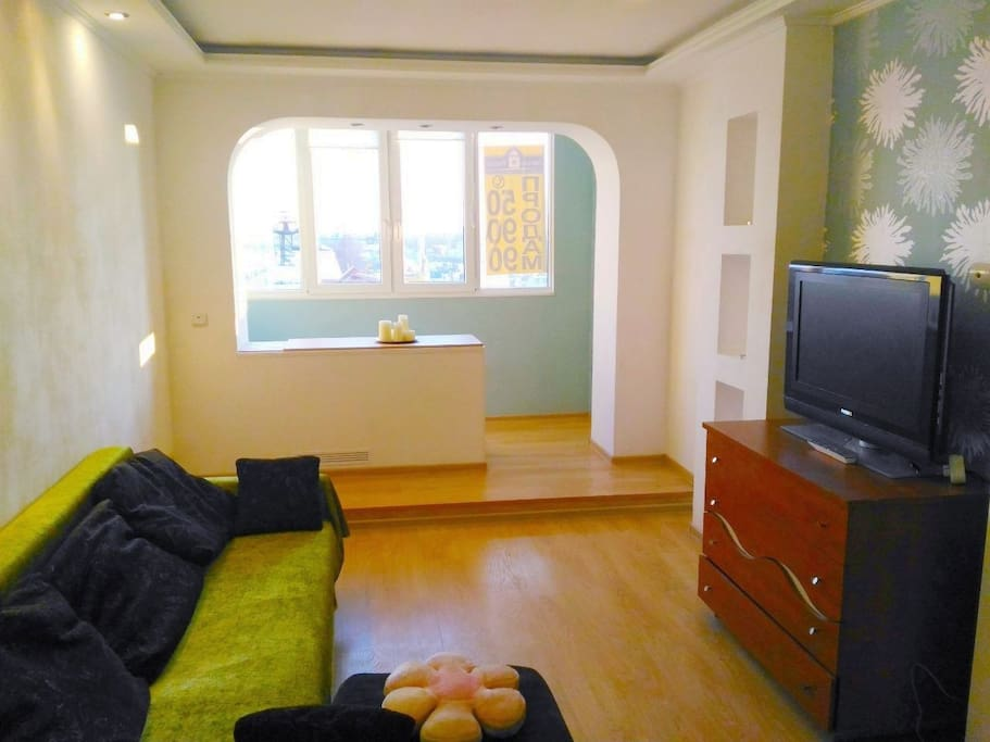 Large room with a sofa bed for 2 guests/ Гостиная с диваном-кроватью для 2 гостей