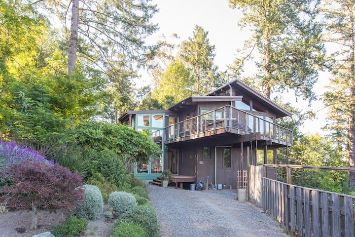 Zoe's Tree House