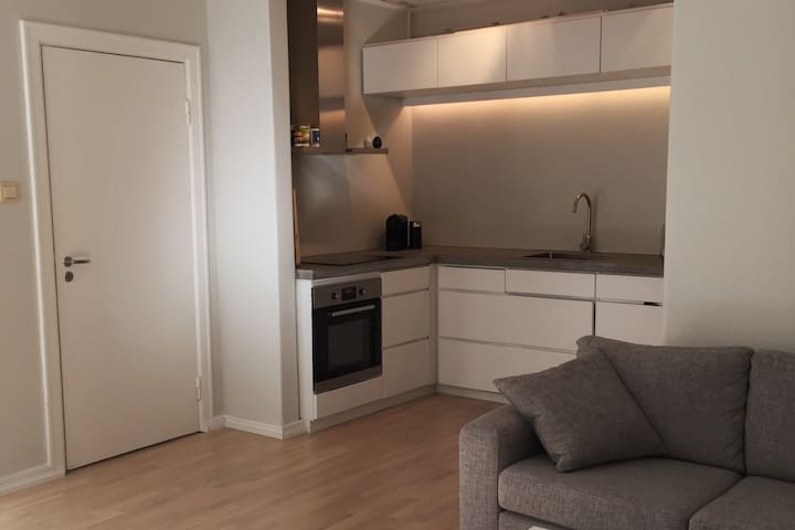 Great apartment in the heart of Oslo