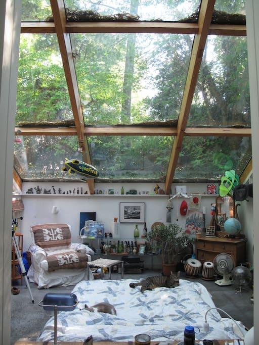 Sunroom/bedroom