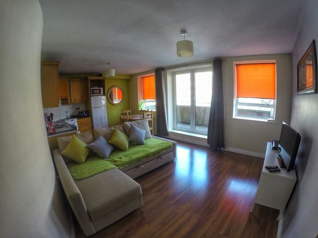 Cozy 2 bedrooms apartment - Dublin - Appartement