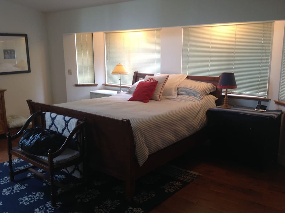 Almost too large Master Bedroom