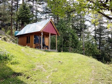 Ted's Cabin | Private hut |Shangarh| Sainj #WFM