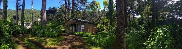 Cozy Coastal Yachats Cabin on 101