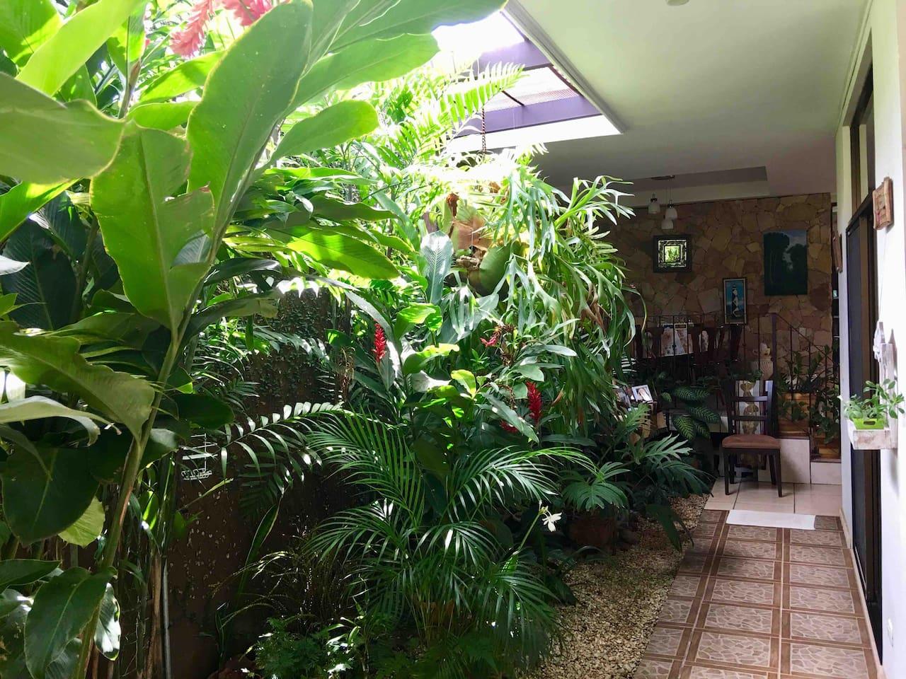 Jardín interno.