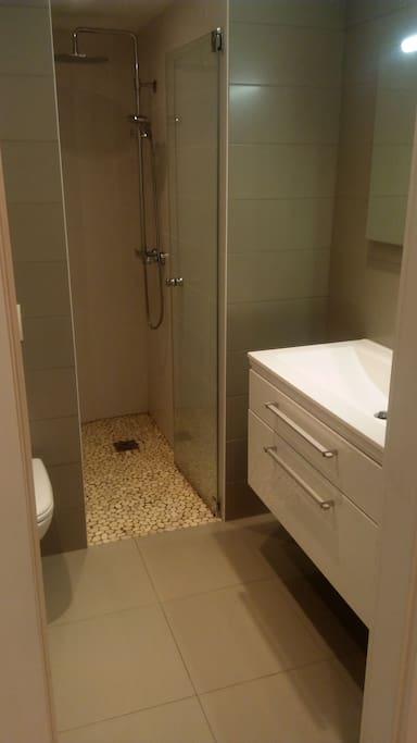 Salle de bains (douche, lavabo)