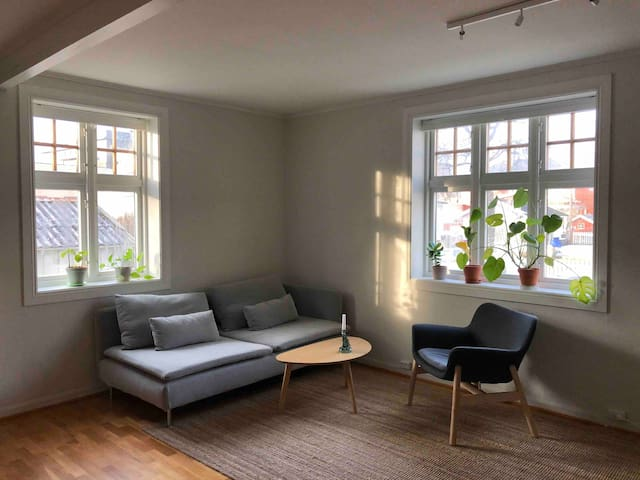 Two bedroom villa apartment in Bodø City Center