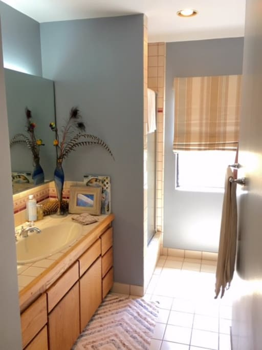 full bath.  shower + tub!  nice big vanity with lots of light & mirrors.