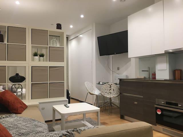 Brand New Beauty Studio Apartment