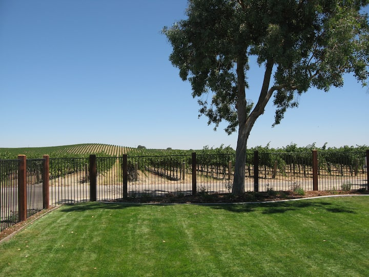 Vineyard View in the heart of our 80 acre vineyard