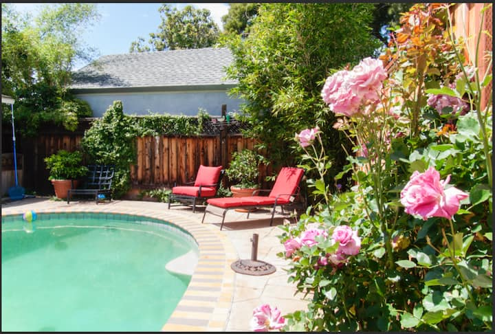 Private pool in luxury & modern house Downtown MV