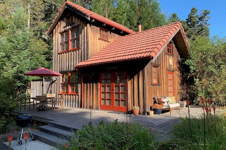 Cozy cabin in the forest, 5 acres
