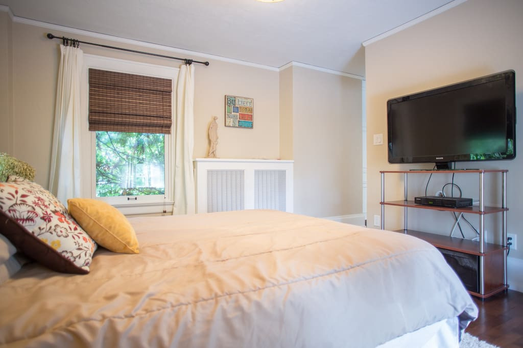 Master bedroom with cable tv and queen bed