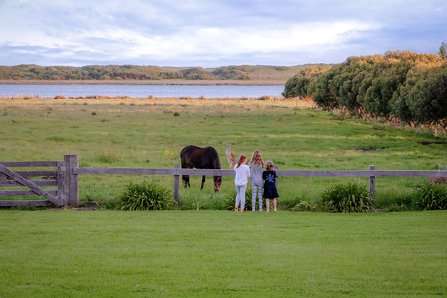 """Guests get up close and personal with """"Roo"""" and """"Posie"""" the horse, best of friends!"""