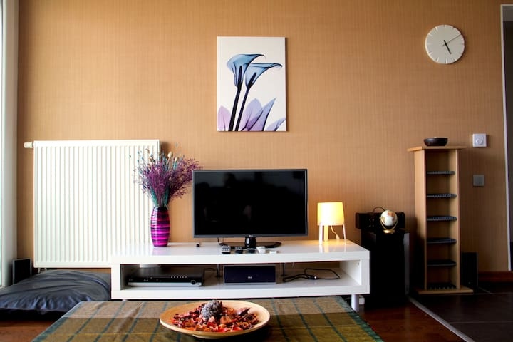 artistically beautiful setting.  also technically great. satellite TV with hundreds of local and international channels. 5+1 sound system.   Even HDMI cable available to connect your computer.