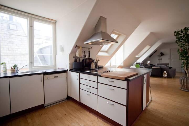 Fabulous city centre penthouse - Copenhague - Appartement