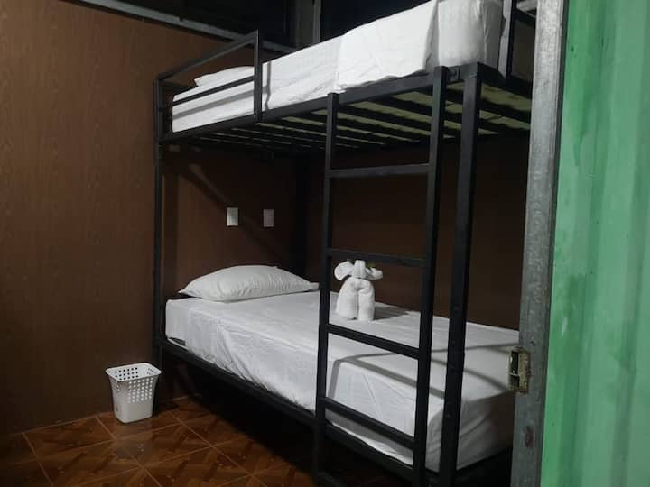Bunk bed in Shared Dorm // Jungle Containers