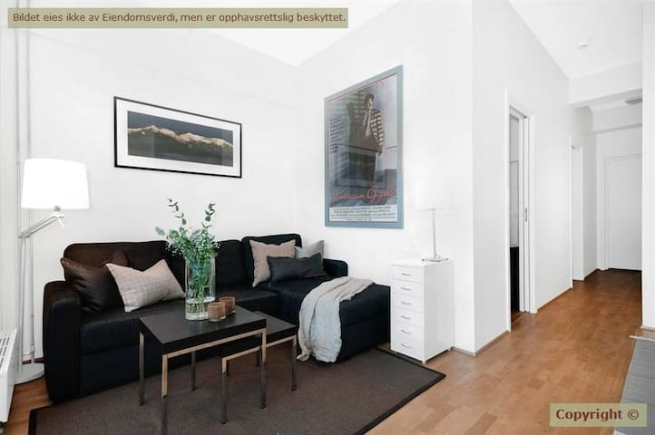 Modern appartment - heart of Oslo