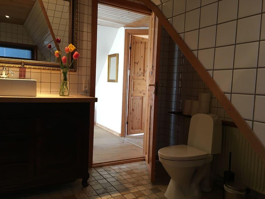 Det store badeværelse