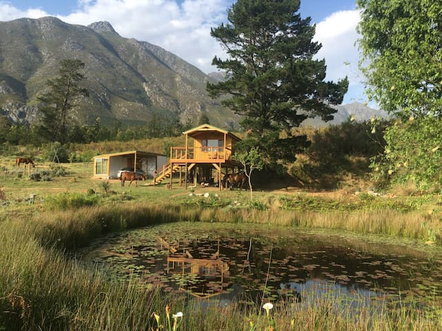 The Hermitage Valley Treehouse
