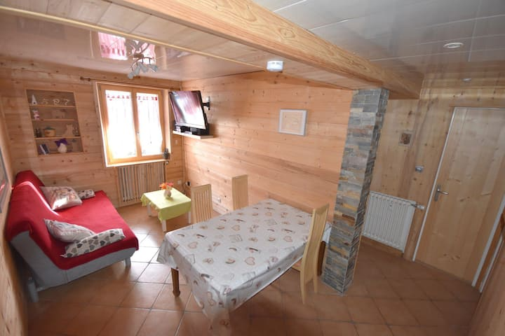 Retour aux Neiges- 5 people- 2 bedrooms apartment
