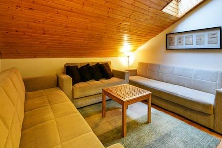 Apartments VILLA IVICA /Marianka/3-room APT GRAND - Marianka - 客房