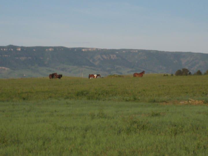 Wyoming DRY Camping