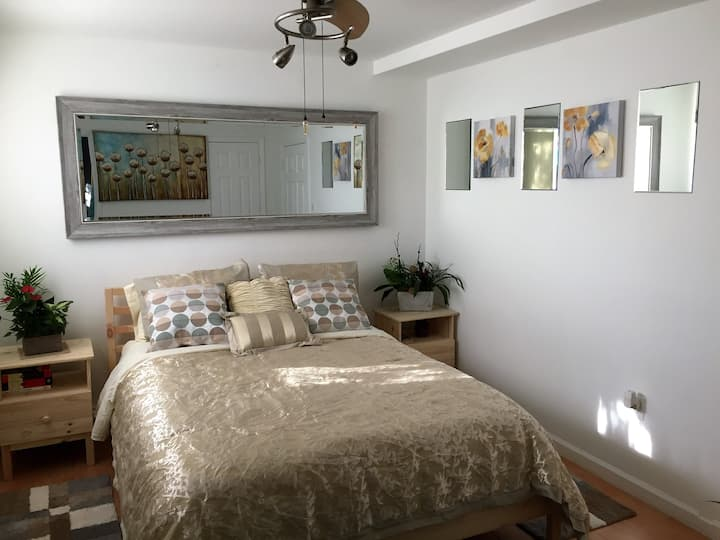 Modern, Ambient 1-Bedroom Apartment